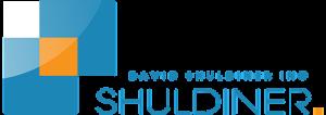David Schludiner logo